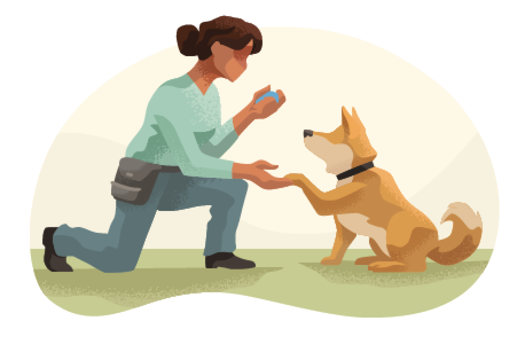 Pet Trainer and Dog Walker